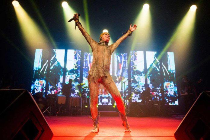 Coala Festival anuncia programação completa da edição 2019 | Agenda | Revista Ambrosia